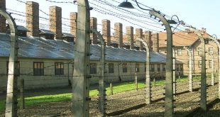 Barbed_wire_near_by_the_entrance_of_Auschwitz_I